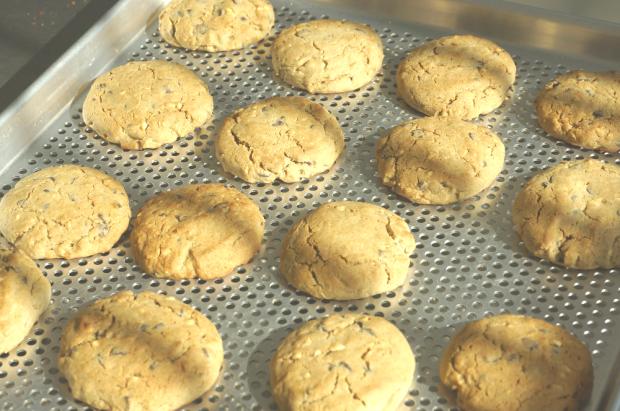 biscotti morbidi di avena 1
